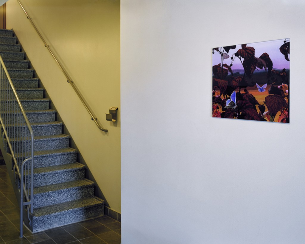 Konstnärlig gestaltning i FB:s nyproduktion. Konstnär Mathilda Fahlsten, kv Malmkronan och Barnkammaren, Hässelby strand, Aprikosgatan 1D & E. Konst. Foton på vägg i 2 entréer. 2005